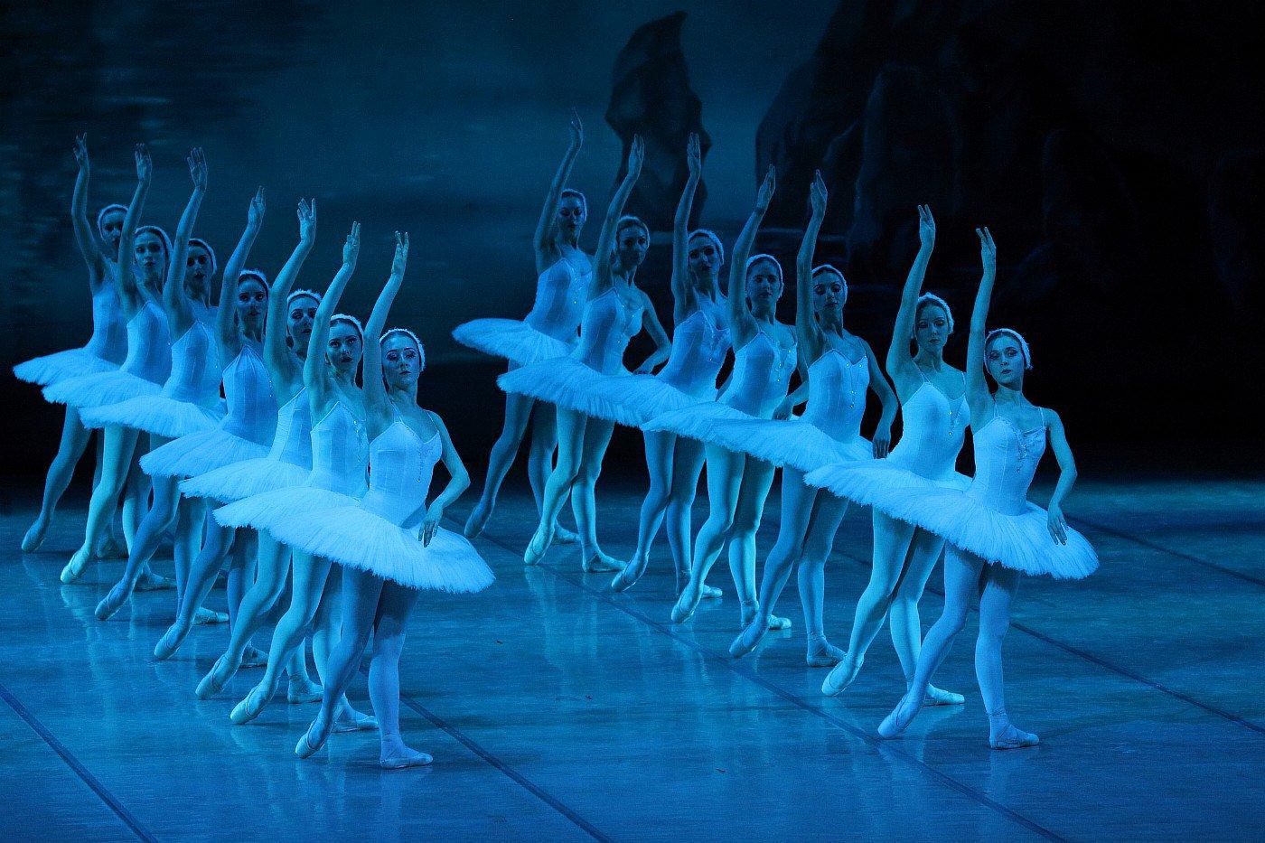 Чайковский фото лебединое озеро