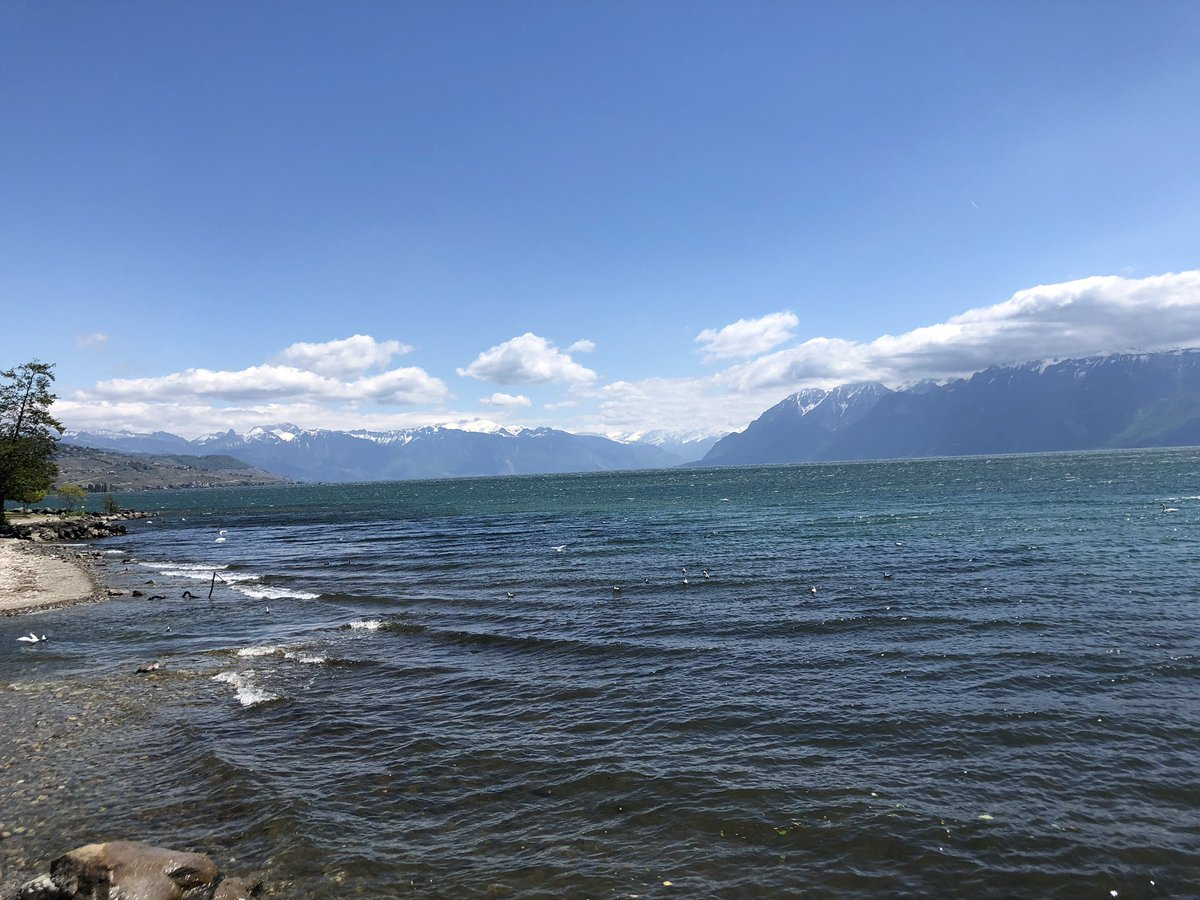 "Feels like ""Surfs Up"" on the lake today. @Olympic_Capital #lakegeneva https://t.co/H6Mo1kWG02"