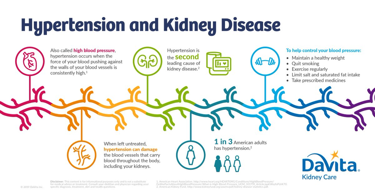 Davita On Twitter Hypertension Or High Blood Pressure Is The Second Leading Cause Of Chronic Kidney Disease During Nationalhighbloodpressuremonth Learn More About How Blood Pressure Affects The Kidneys Https T Co Nlk5csjfqi Https T Co