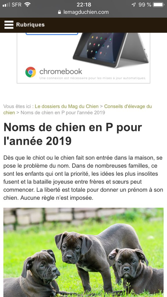 Media Tweets By C Adrien Pvr Twitter