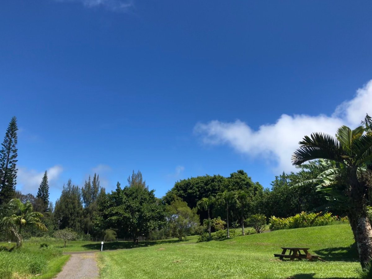 test Twitter Media - North shore warm and mostly clear. #cmweather #Maui #blueskies #Mauinokaoi https://t.co/9bXB2q3afM