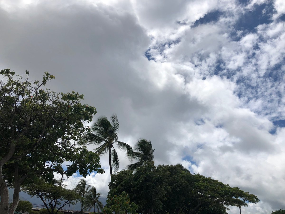 test Twitter Media - Mostly overcast and windy in Kahului. #cmweather #Maui #kahului https://t.co/9tddCUzxW4
