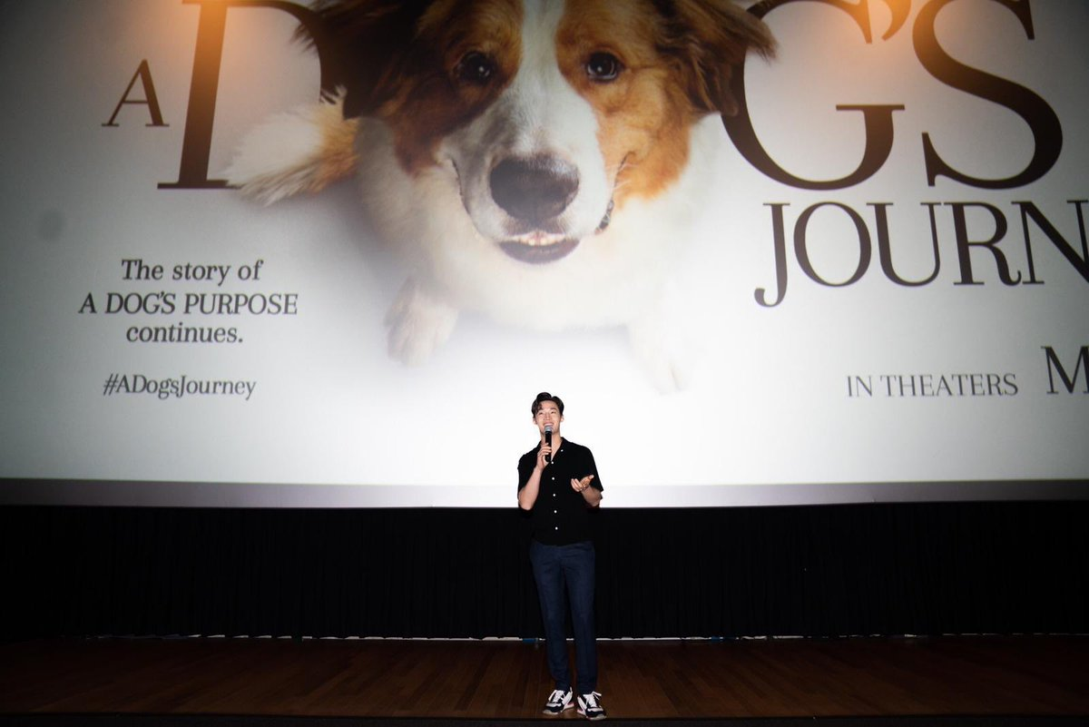 test Twitter Media - Enjoyed every moment putting together A Dog's Journey with the amazing cast and team. Out May 17! @Amblin @UniversalPics @a_dogs_journey  #Adogsjourney #hollywood #dog https://t.co/6140qsNLRR