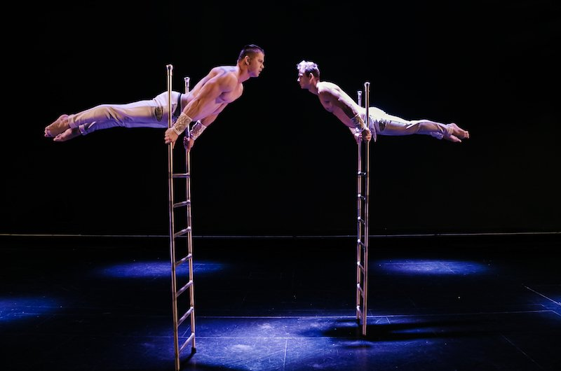 Ladder acts are not common but when you have two acrobats doing the show at the same time, we can definitely say that it is rare.  https:// youtu.be/iCCyMjyAbMo     #Ladder #circus #circo #cirque #acrobats #acrobat #acrobatic #acrobatics #ladders #ladderworkout #evententertainment<br>http://pic.twitter.com/BCKkYhAMtV