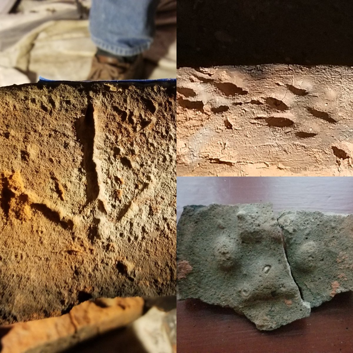 Ever wonder what secrets hide behind plaster? While doing restoration work at the Lynnhaven House, a surprise greeted us! Prints, including turkey and dog prints, were found on some of the bricks making up one of the fireplaces! How cool! #SecretsMW #MuseumWeek