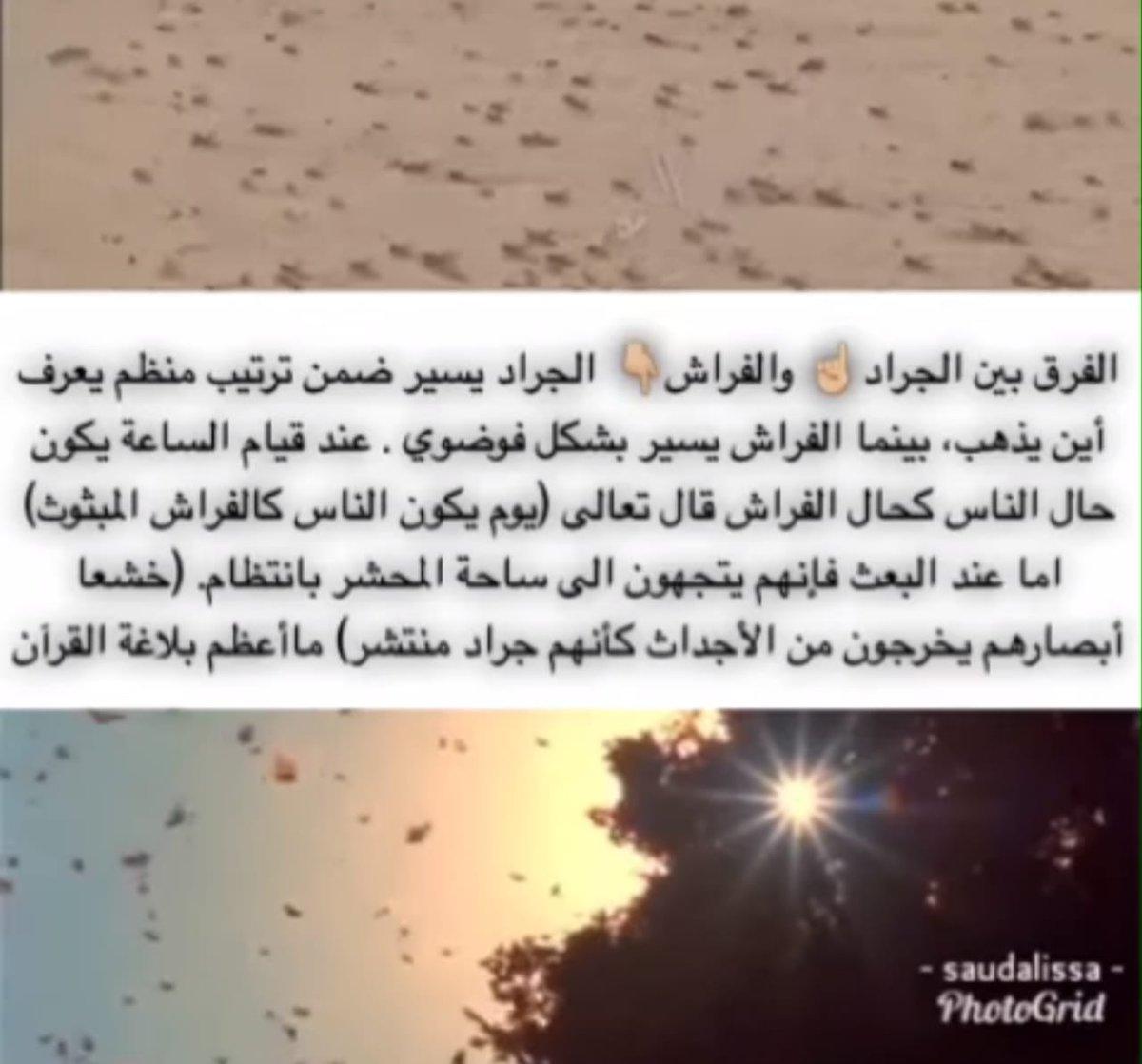 df2d03843 #القران_الكريم ما أعظم بلاغة القرآن!! #غرد_بصورةpic.twitter.com/t3Ab7bbFxf