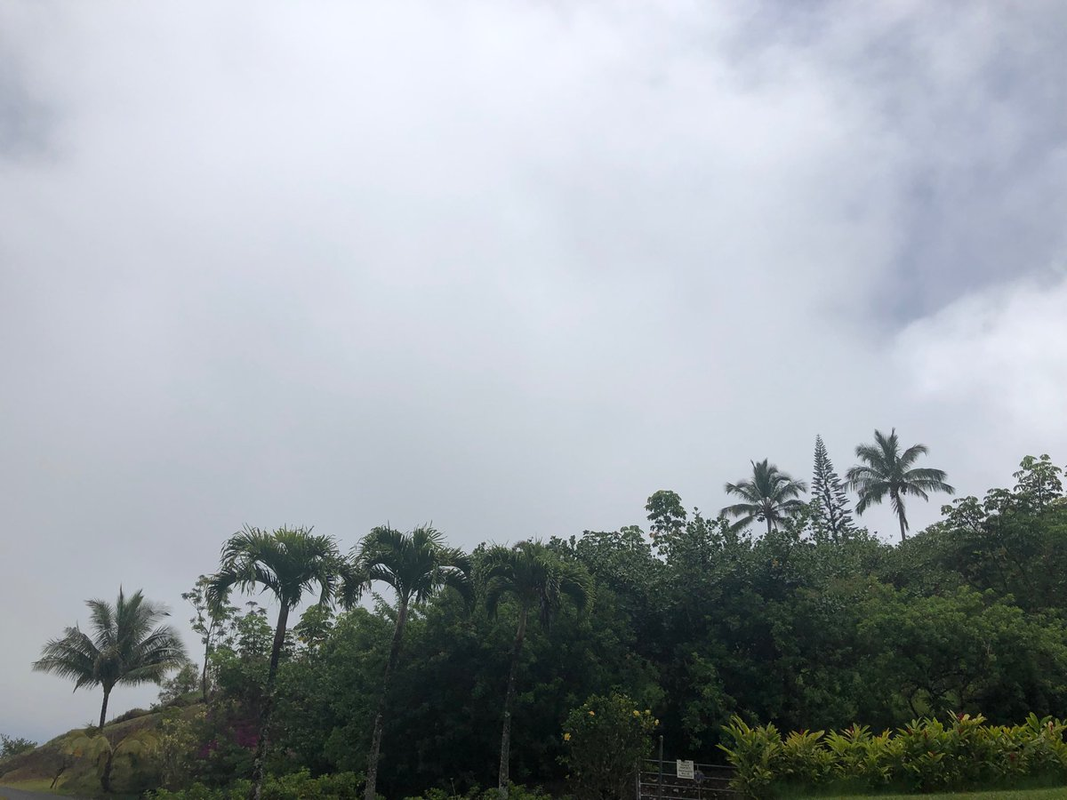 test Twitter Media - Mostly overcast and sprinkling on the North Shore. #cmweather #Maui https://t.co/fxmx7Jt6It