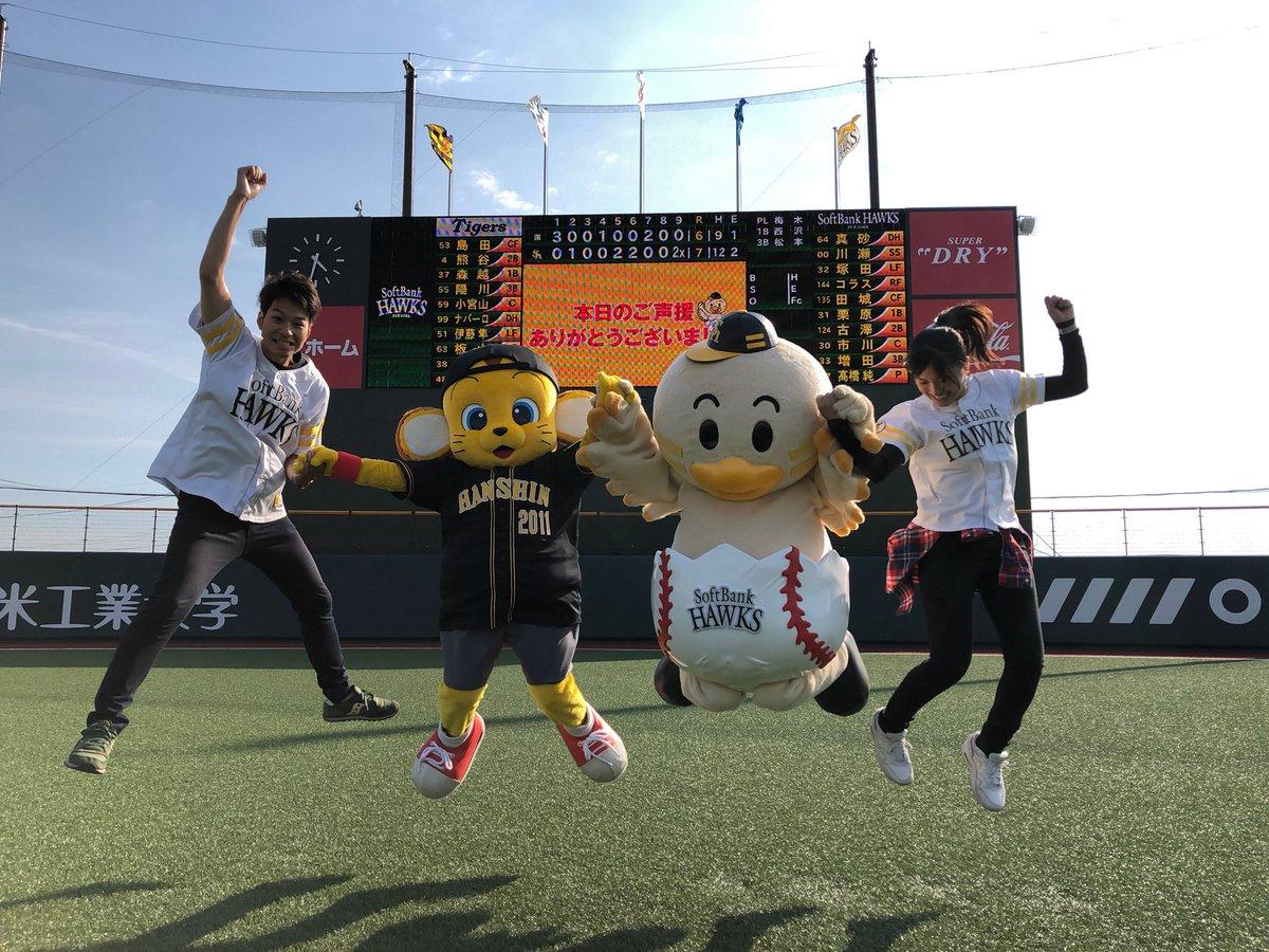 タマスタ筑後公式(SBH)'s photo on Hawks