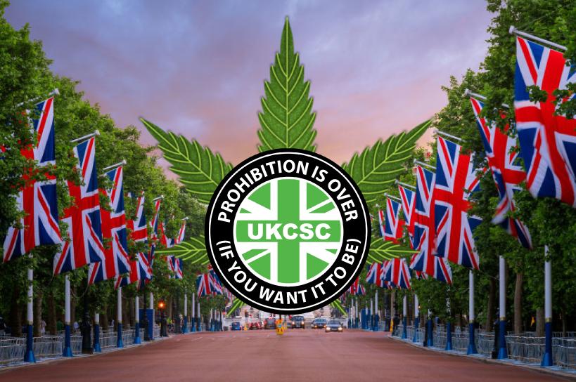 联合国报告显示英国是世界上最大的合法大麻生产国