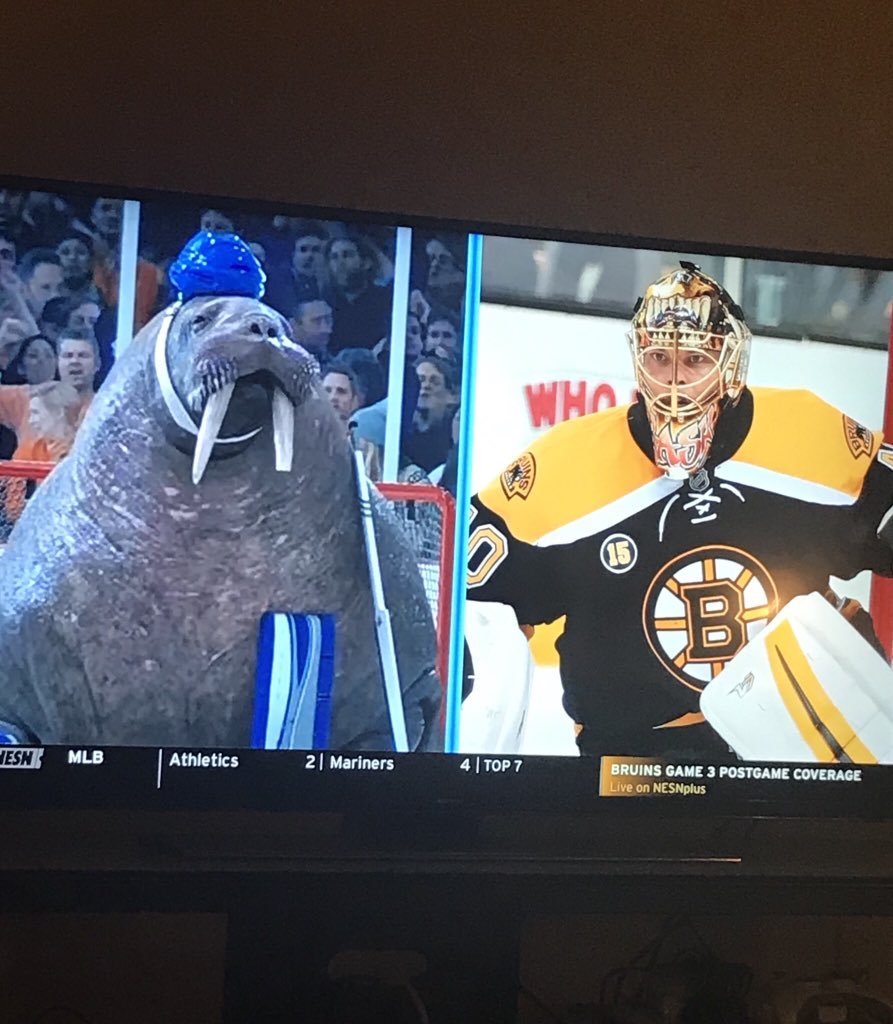 Andrew Raycroft On Twitter Tuukka Rask Looks Like The Walrus From