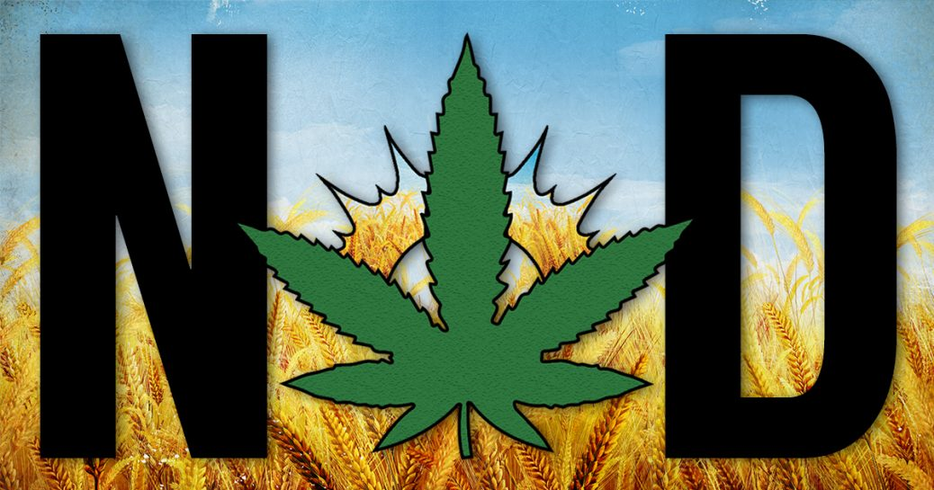 北达科他州州长签署法案将大麻非刑事化