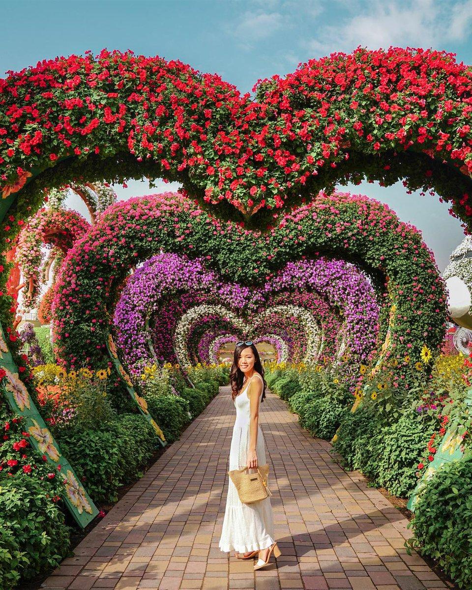 941116dea9e miraclegarden dubai uae green dress whitedress travel trip world heart love  beautifulgirl amazingview amazing life world