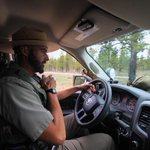 Image for the Tweet beginning: Patrolling Bryce Canyon is all