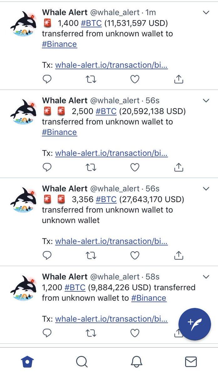 whale alert binance mercato di bitcoin sotterraneo