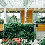 Forbedre din produktivitet med Green Office Design #productivity #GreenWall #greenDesign https://t.co/hHTtnlye3A