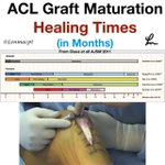 Image for the Tweet beginning: ❇️ACL Graft Harvesting and Healing