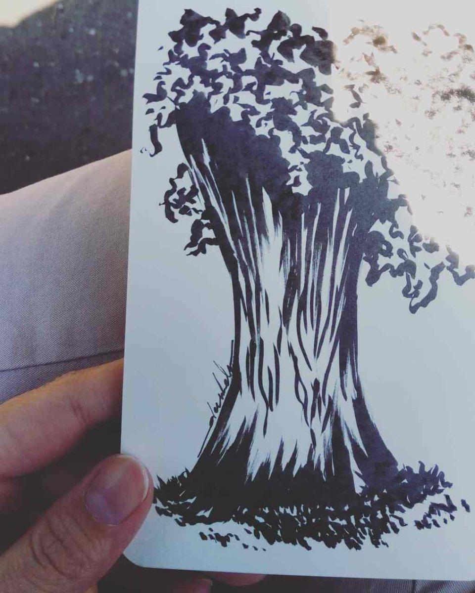 Tree trunk marks https://t.co/k9pIhtoA30 https://t.co/oqXEEOiIUX