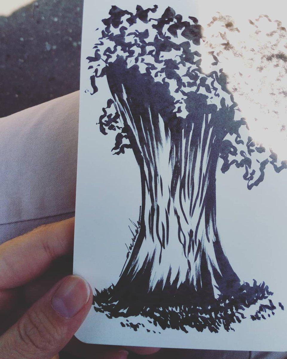 Tree trunk marks #dailyart #dailyillustration #trees #nature #onestroke #quicksketch https://t.co/bVj2Xz2dP9