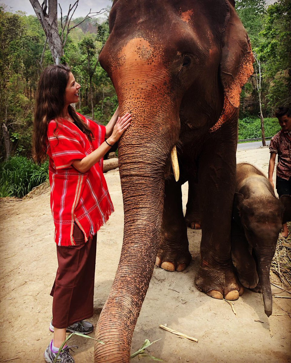 Best. Day. EVER  We spent an entire day at #PataraElephantSanctuary  We fed them, walked with them, bathed them....then got to hang out and play w/ a 2 week old baby! This is a #BucketList MUST! Such majestic animals! All rescues pic.twitter.com/W99qYziDRb