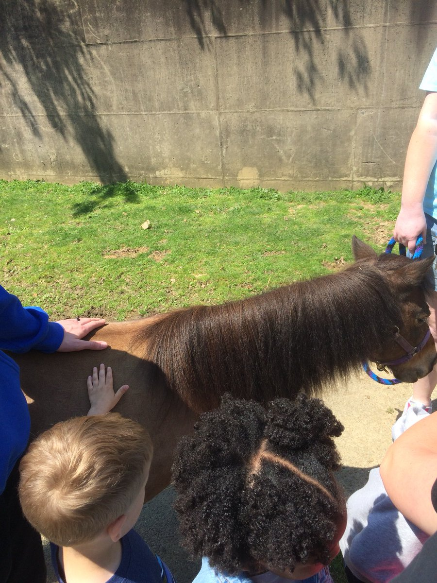 Animal science students give preschoolers a tour of the lab. <a target='_blank' href='http://twitter.com/APSCareerCenter'>@APSCareerCenter</a> <a target='_blank' href='http://twitter.com/APS_CTAE'>@APS_CTAE</a> <a target='_blank' href='https://t.co/3r3CrIRAai'>https://t.co/3r3CrIRAai</a>