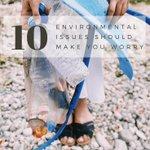De øverste 10 miljøproblemer bør gøre dig bekymret Skolet af videnskab https://t.co/zGHAL64wct