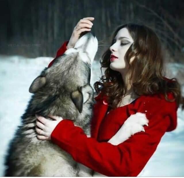 °°°°°°°°°°°°°❤ . . . . . . يُحكَى أنَ ليلَى التَائهة لَم يأكلها ذِئب  الغَابةَ ... أكلها ذئبْ الهَاتف ...💔  أمـــ 🌛ـــيـ 🌜ــرةَ  تصبحونَ على وآقع جميـل 🌜