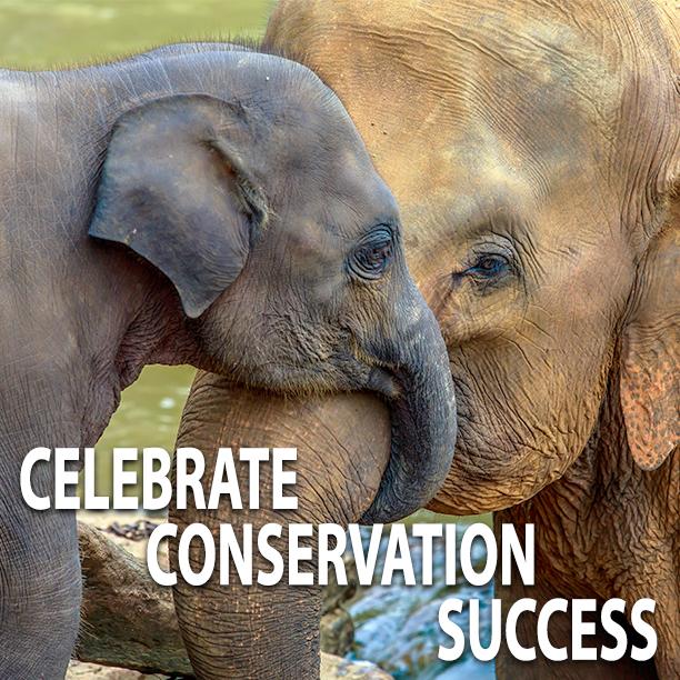 #EndangeredSpeciesDay Photo