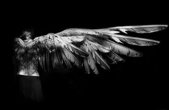 test Twitter Media - battle worn. an angel sent to  do the master's bidding. cherubs carved into marble, or other more sinister untruths. she is not so cute and sweet. sent down for a purpose, she will go where  shadows bloom darkest.     Image by #aesthetic #poems #MadVerse #Angel #poetry https://t.co/IqXeE6ce52