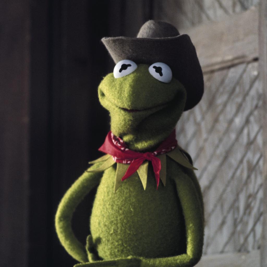 Kermit the Frog's photo on Weekend