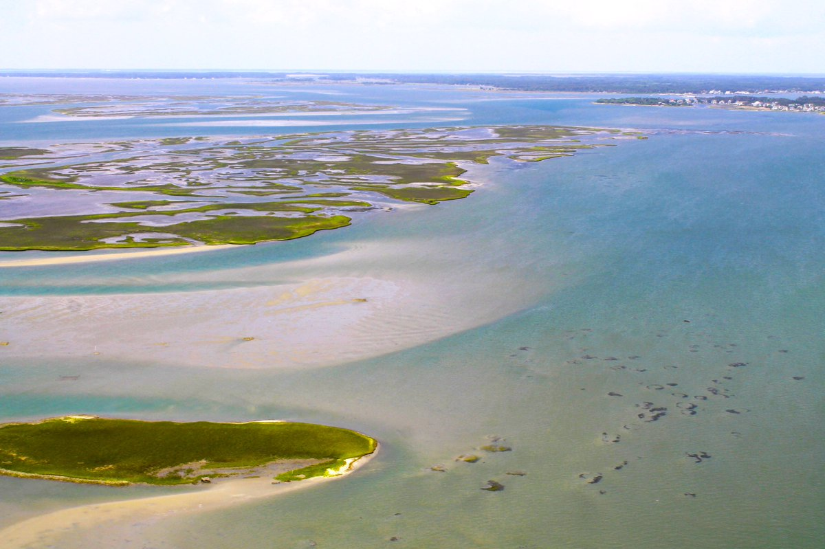 N.C. Coastal Reserve's photo on #FlashbackFriday