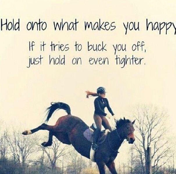 HorsemanshipJourney's photo on #FridayMorning