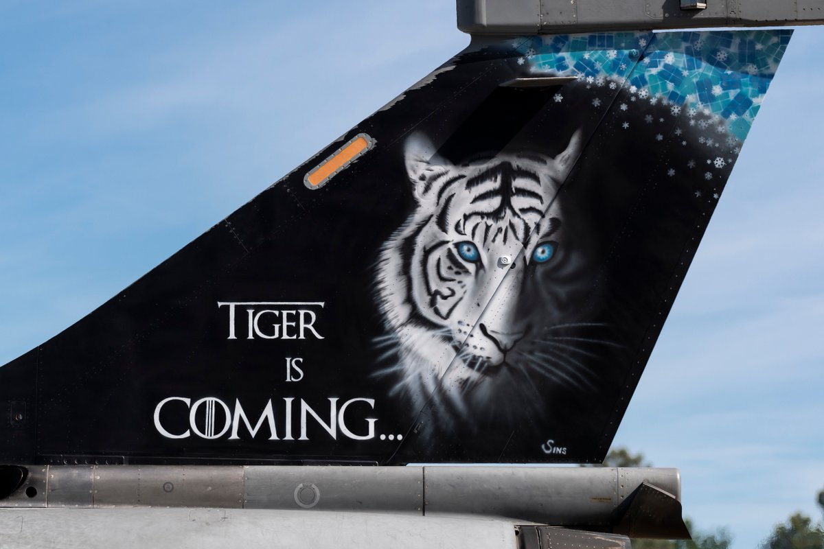 #NTM2019 Trop de blabla dans @GameOfThrones, nous on a trouvé qui va récupérer le trône de fer... Tiger is coming ! 🐯🐯🐯