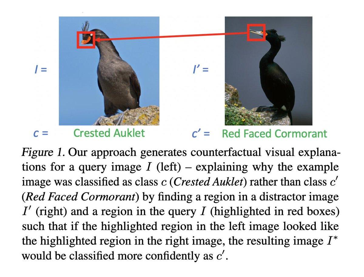 Counterfactual Visual Explanations  画像分類器の結果に対して、似た他クラスの画像と「この領域が他クラスのものだったら他クラスと分類したのに」(画像参照)という説明を行う手法を提案。人に鳥の見分け方を教えるのに利用する、という評価も行なっており面白い。
