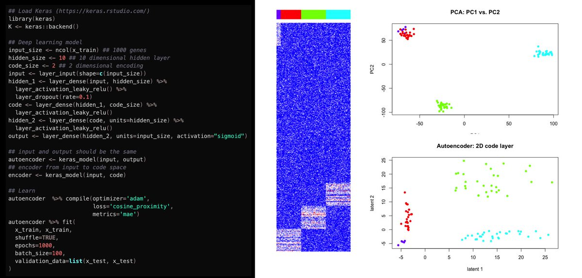 Tinkering with #deeplearning in #Rstats. Check out my latest blog post / code tutorial applying autoencoders using Keras for dimensionality reduction of #singlecell RNA-seq data:  https:// jef.works/blog/2019/05/1 7/scRNAseq-Dimensionality-Reduction-with-Deep-Learning-in-R-using-Keras/ &nbsp; …  #bioinformatics #machinelearning #ArtificialIntelligence #NeuralNetworks<br>http://pic.twitter.com/9t1Hetedzo