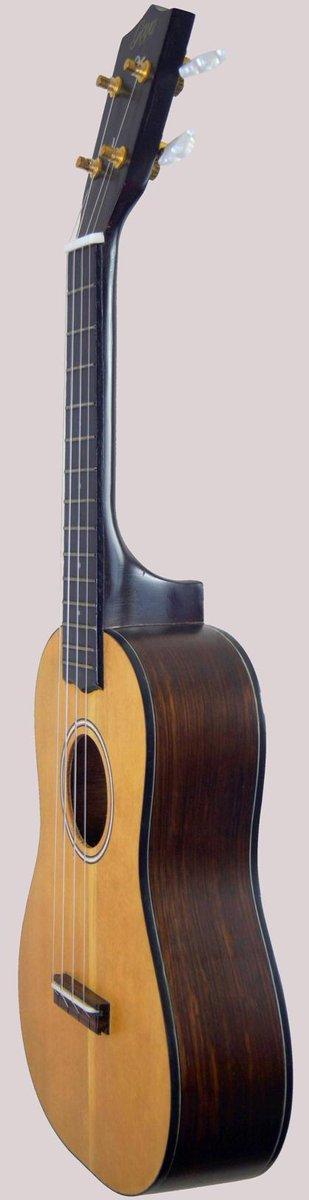 post levin concert ukulele