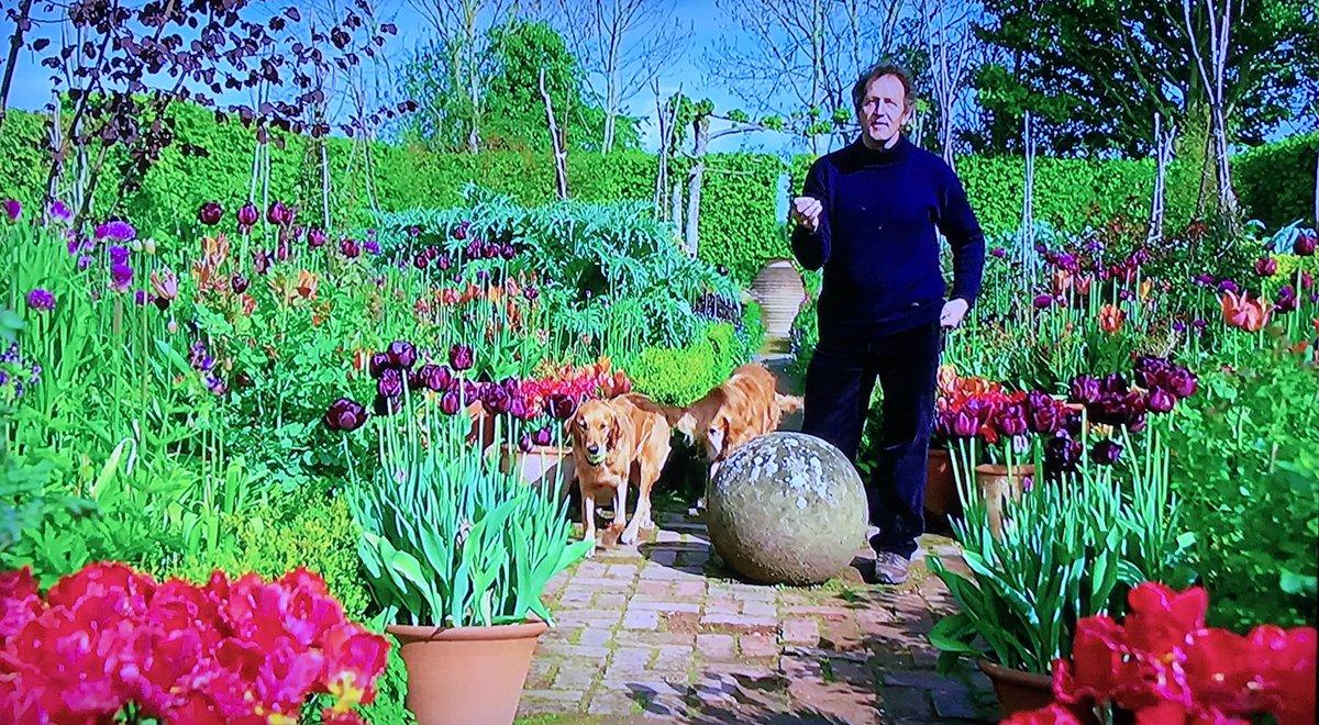 Nick Taylor's photo on #gardenersworld