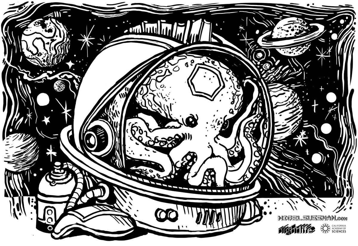 Last night at #CASNightLife, guests asked artist @nigelsussman to send several creatures to space—including: - some sort of alien octopus