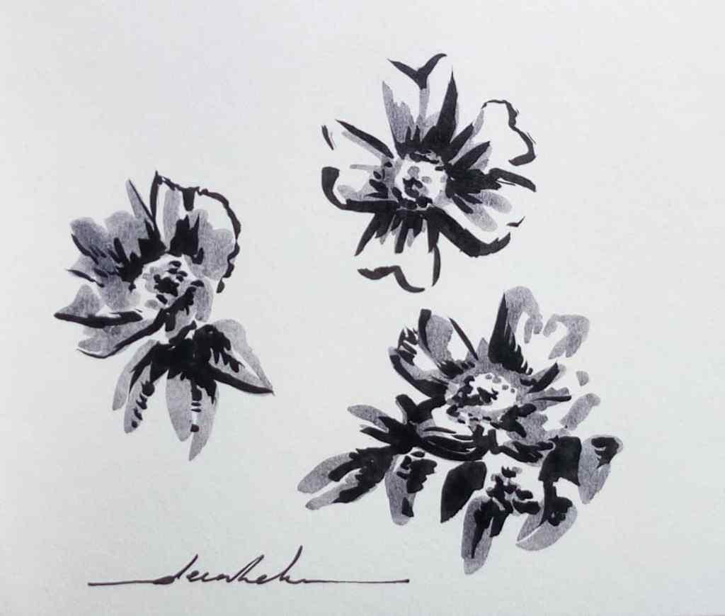 Flowers https://t.co/G09R4jmKIu https://t.co/GkTi2RaojL