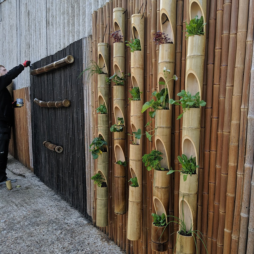 Uk Bamboo Supplies On Twitter Last Chance To Purchase Some