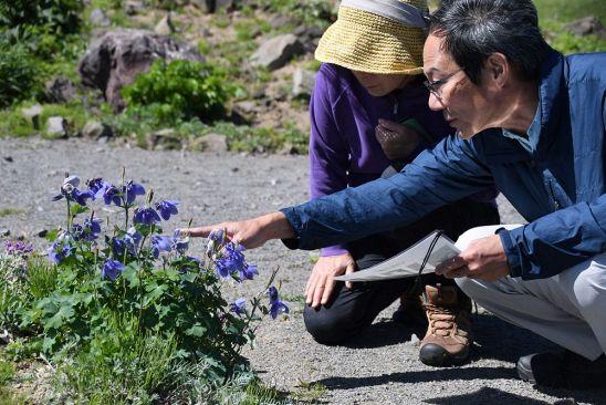 北海道新聞さんの投稿画像
