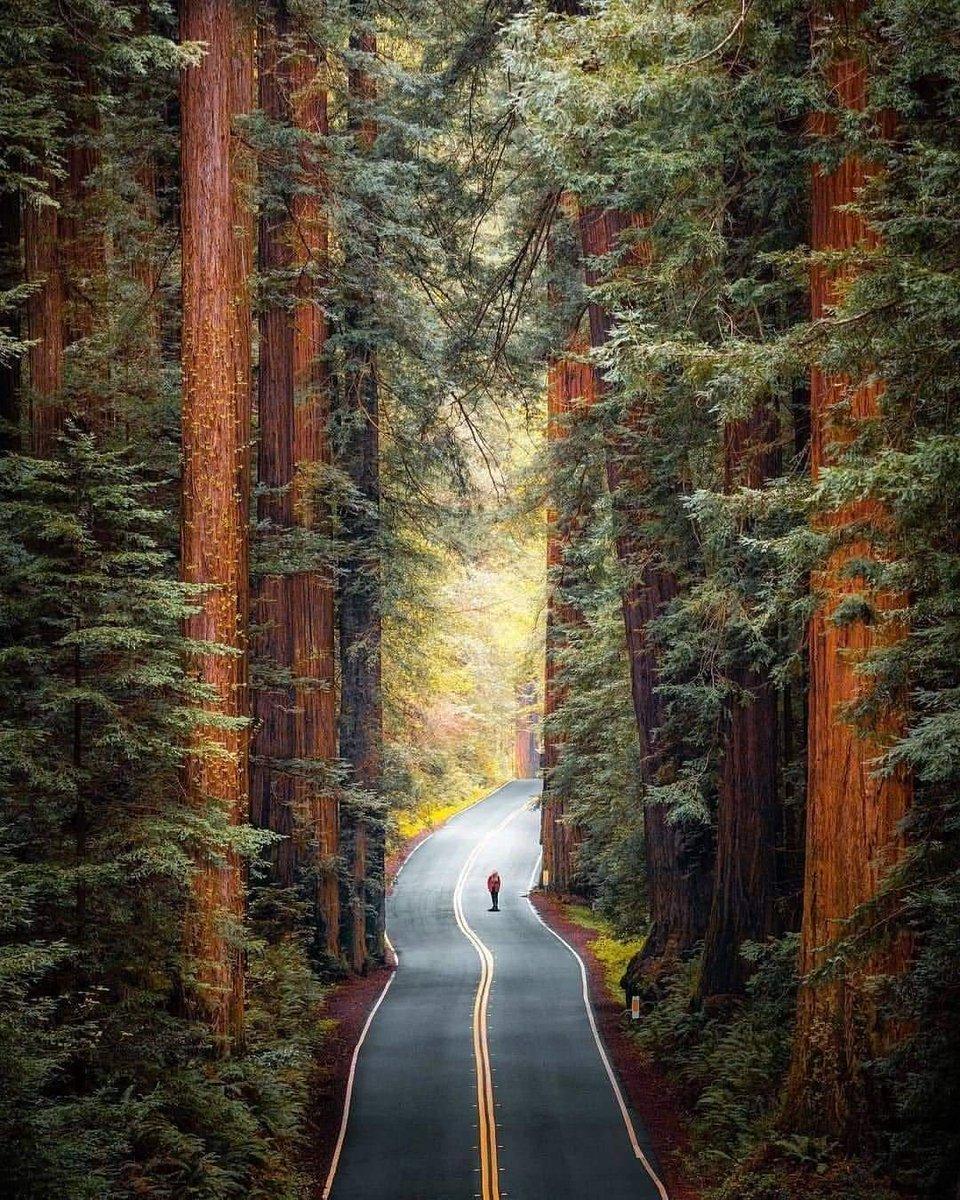 """Kadang kita harus berjalan """"sendiri"""" daripada bergerombol tapi menyesatkan.... Percayalah anda adalah orang yang paling berkuasa dengan diri anda sendiri..."""