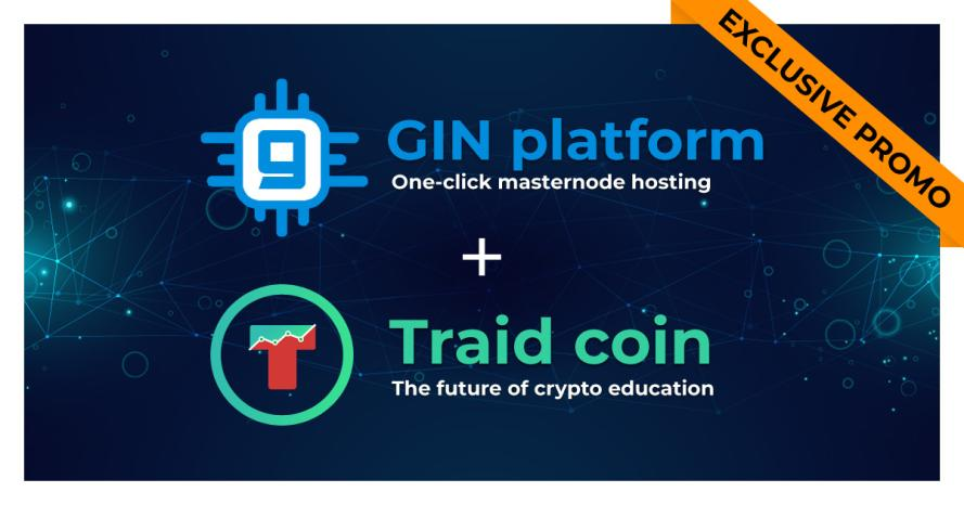 gin coin cryptocurrency