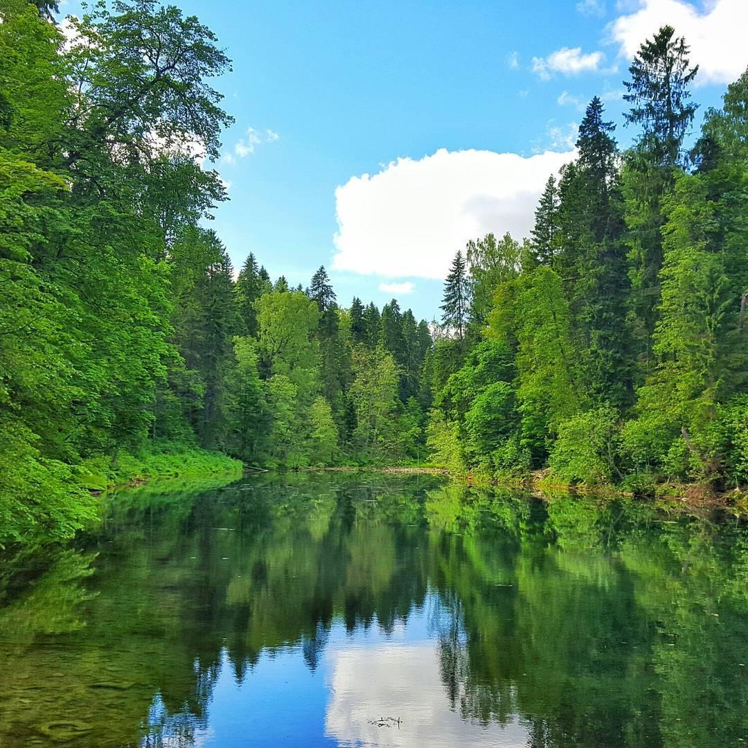 радоновое озеро в ленинградской области фото сюда