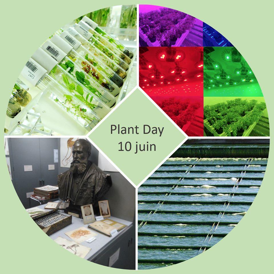 Le 10 juin sera l'occasion de vous montrer ce qu'on fait à l'Institut de Botanique et pourquoi les plantes nous fascinent!  Différentes visites de nos installations sont prévues, il y aura des stands et d'autres activités.  ➡️ http://www.events.uliege.be/plantday/programme/… @UniversiteLiege #PlantDay