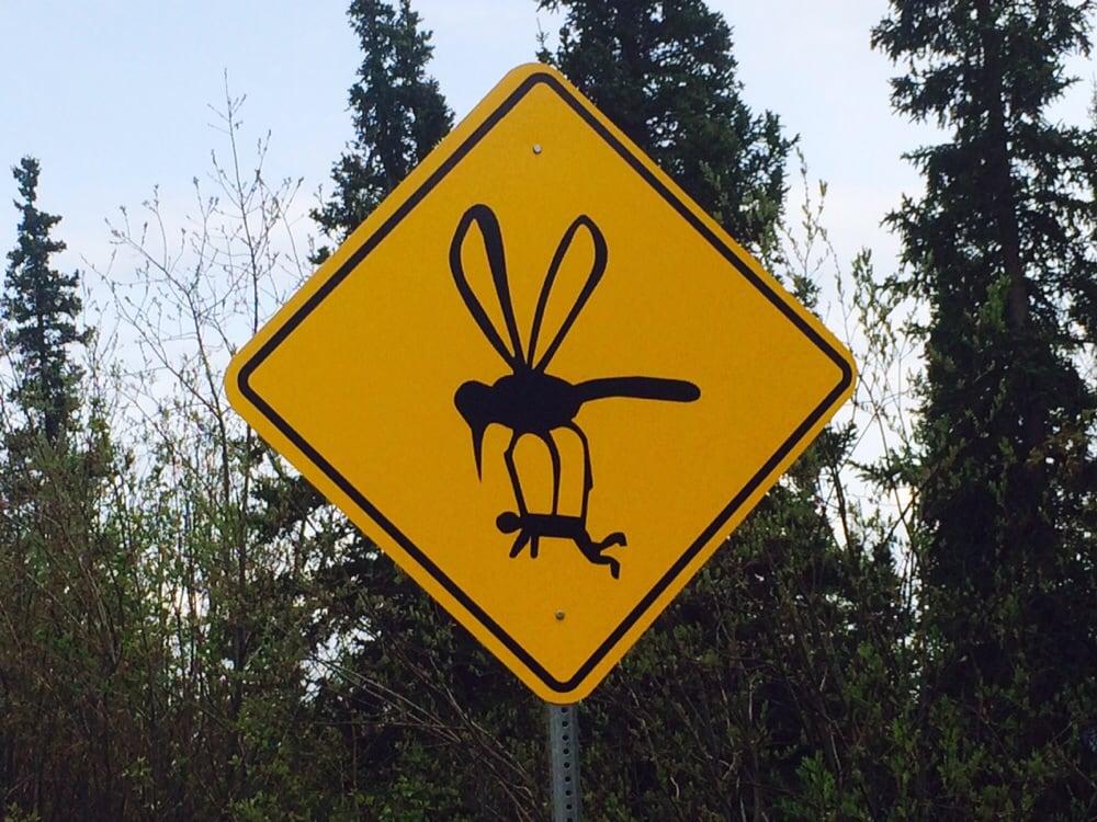 Комары прикольные фото