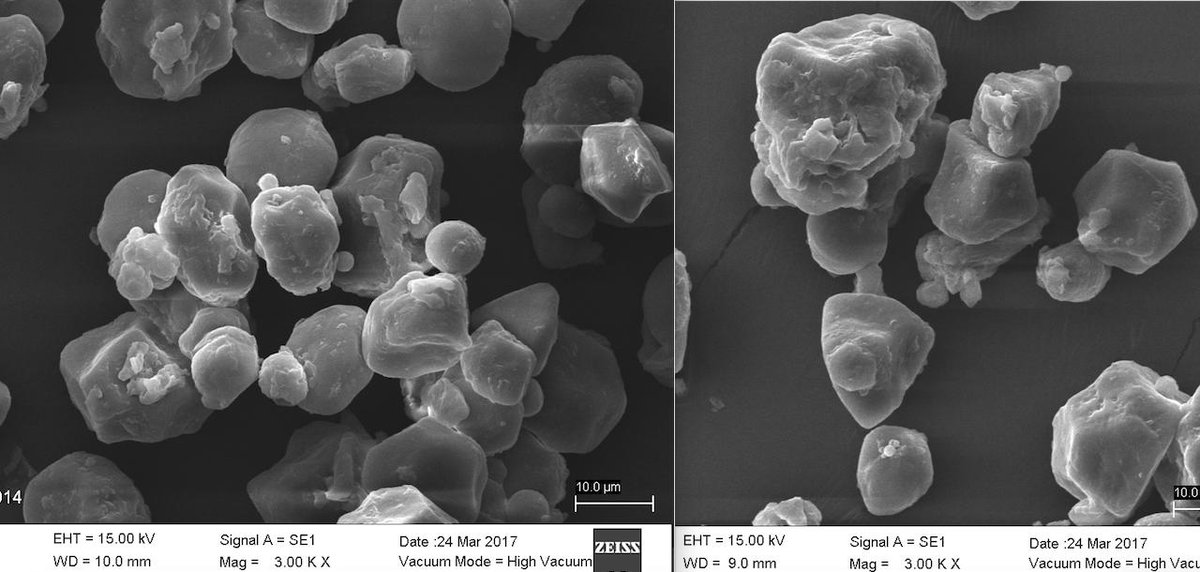 #MyFavoritePlant #PlantDay - Pics of my 1st time using a Scanning Electron Microscope (SEM) to analyze starch granules from different varieties of corn🌽 masa at my university @TecdeMonterrey !  #PlantSciART @GlobalPlantGPC @plantspplplanet