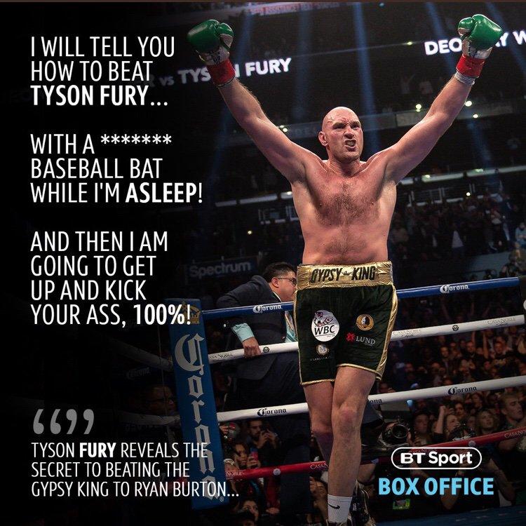 gay porno stella tigre Tyson