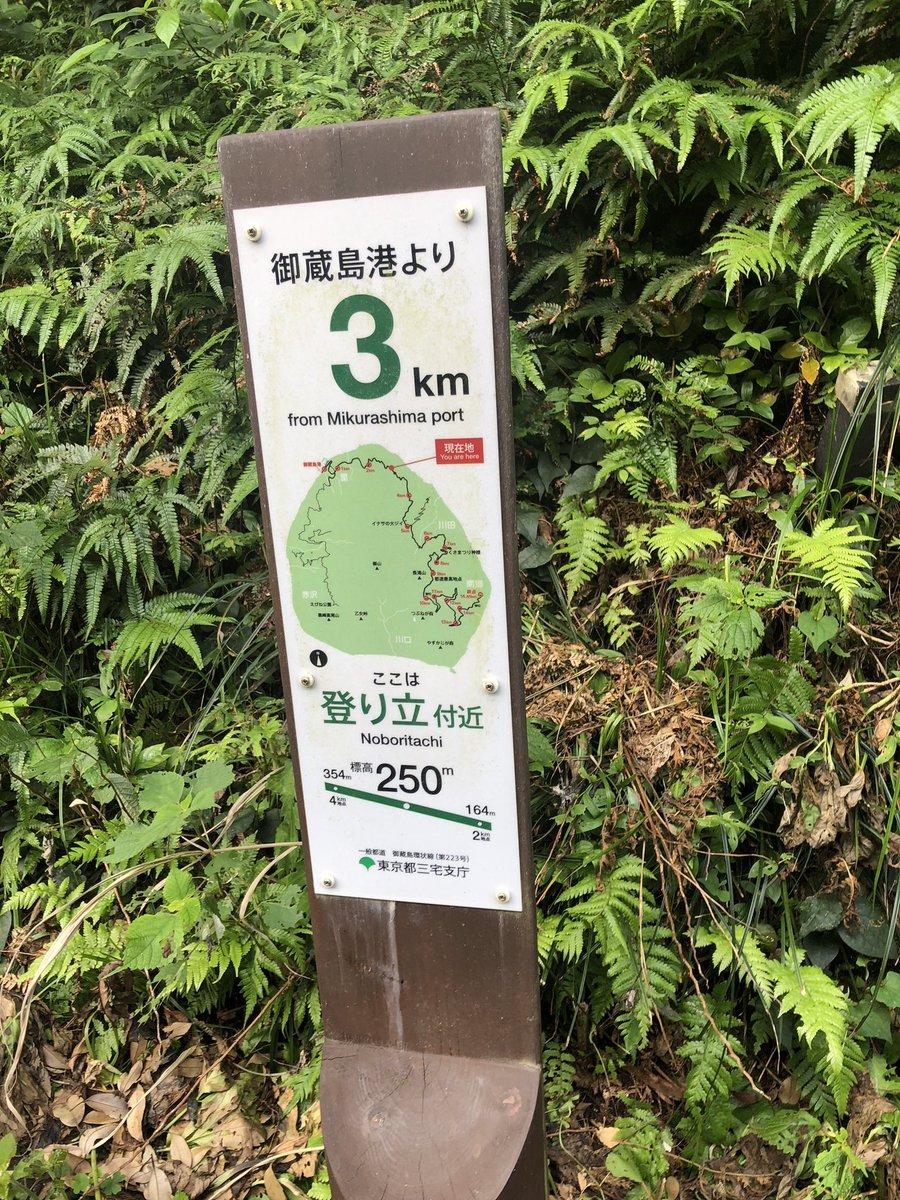 """だの on Twitter: """"東京都道223..."""