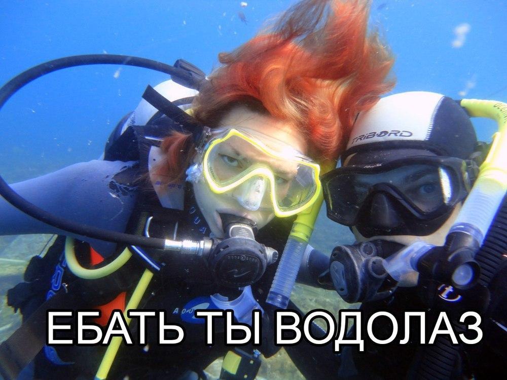 Прикольные картинки про аквалангистов, хай картинки