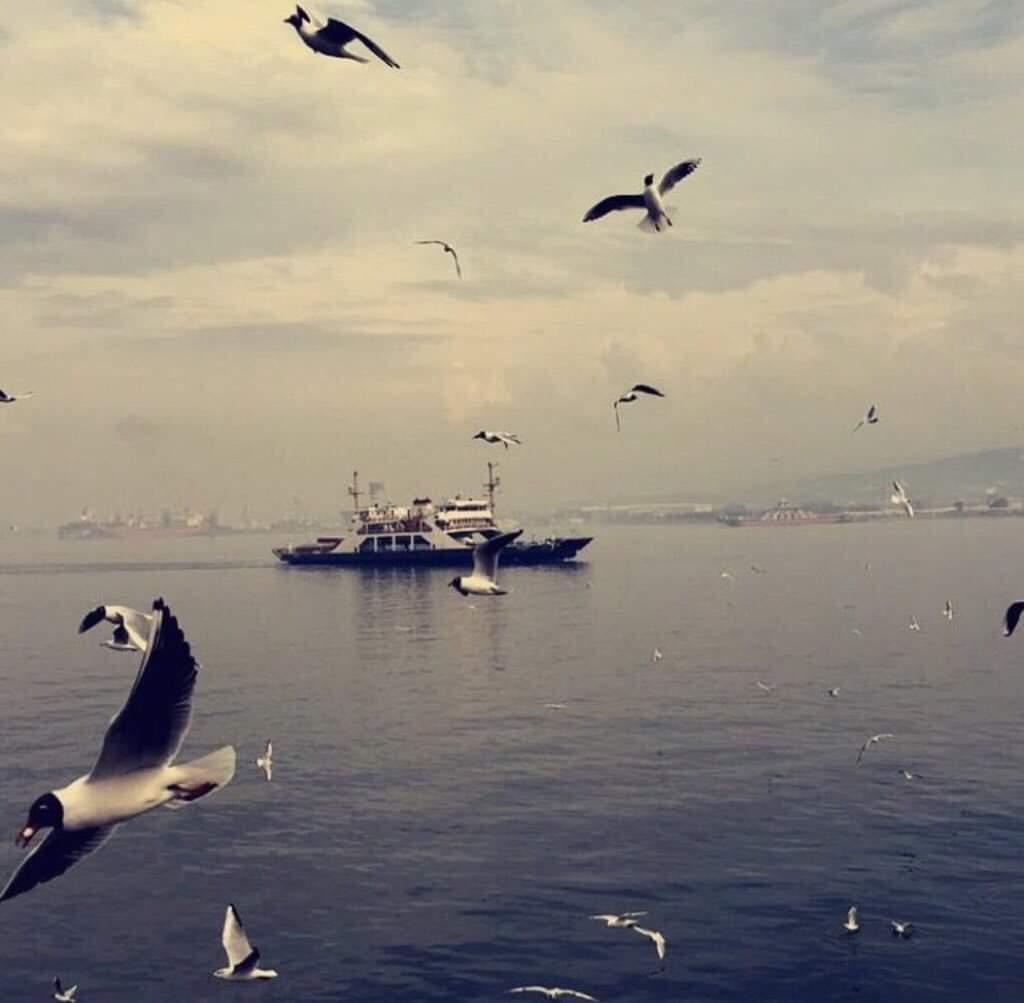 Darb El Hawa (@Kaammaal11) | Twitter